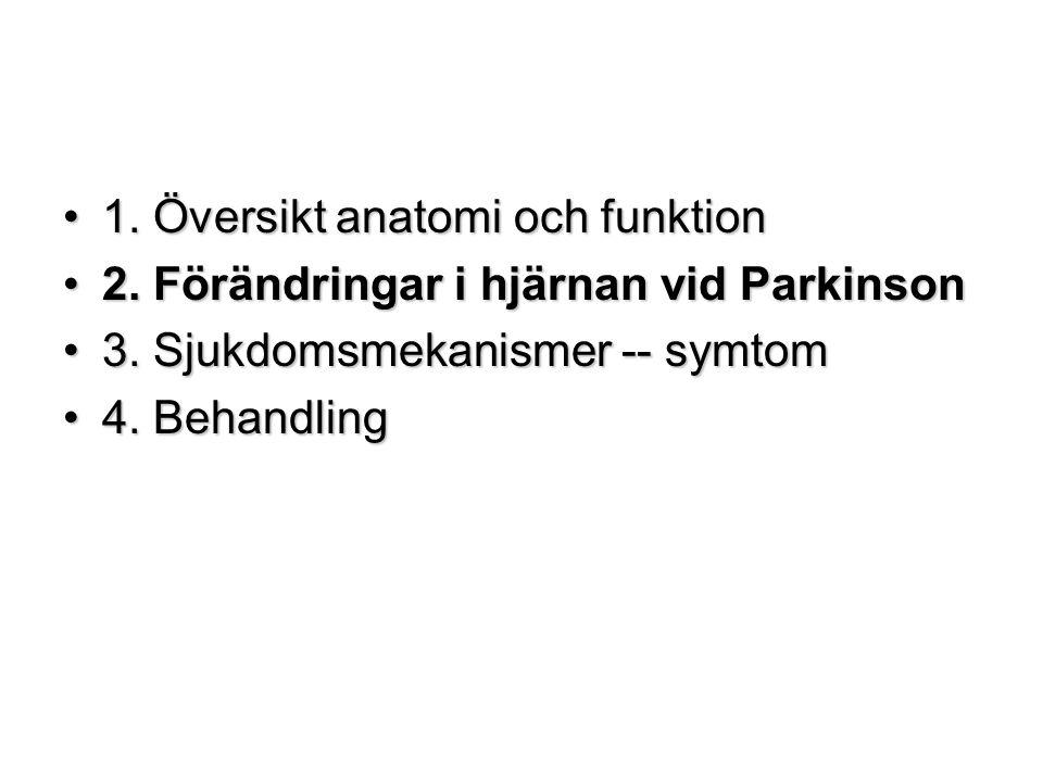 1. Översikt anatomi och funktion
