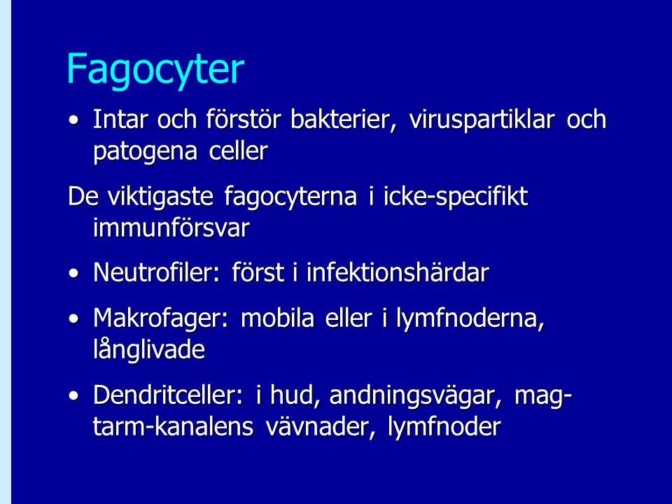 Fagocyter Intar och förstör bakterier, viruspartiklar och patogena celler. De viktigaste fagocyterna i icke-specifikt immunförsvar.