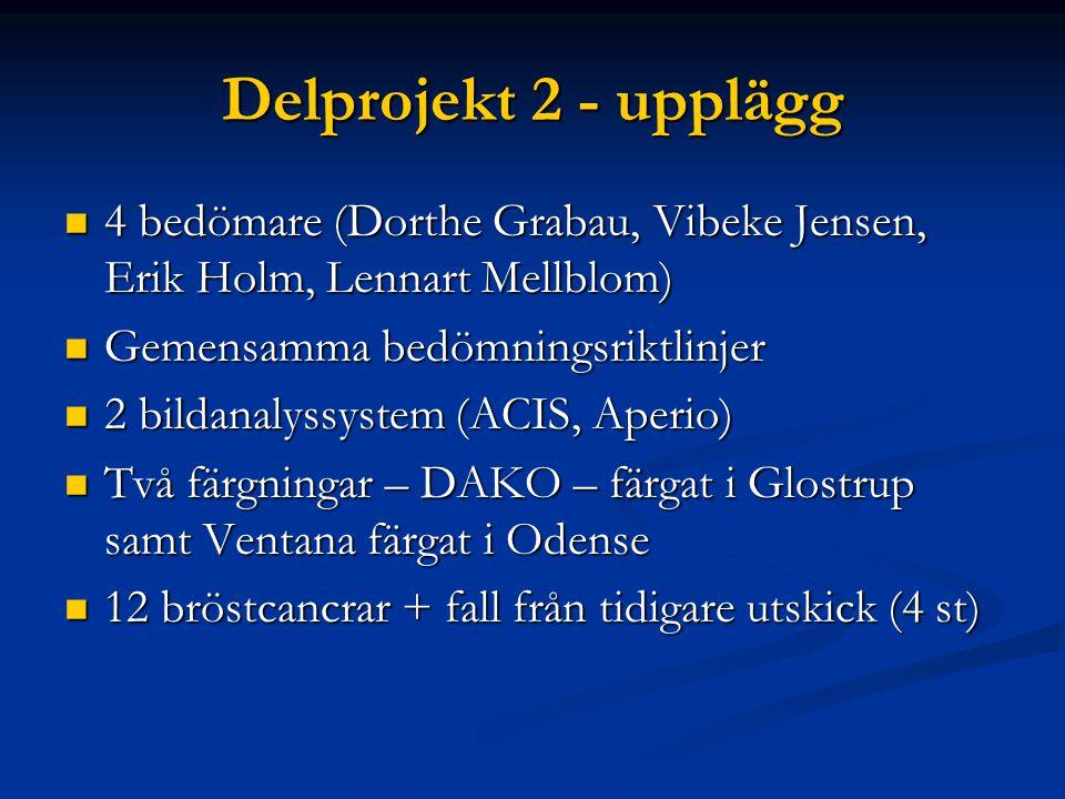Delprojekt 2 - upplägg 4 bedömare (Dorthe Grabau, Vibeke Jensen, Erik Holm, Lennart Mellblom) Gemensamma bedömningsriktlinjer.