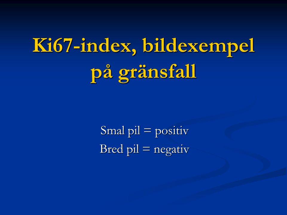 Ki67-index, bildexempel på gränsfall
