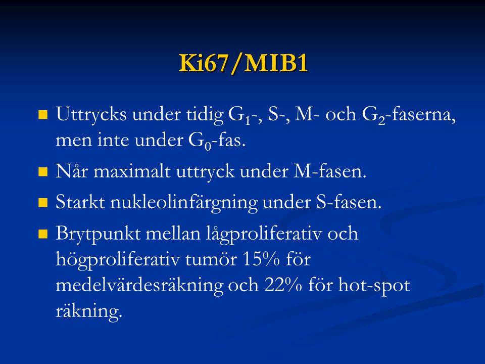 Ki67/MIB1 Uttrycks under tidig G1-, S-, M- och G2-faserna, men inte under G0-fas. Når maximalt uttryck under M-fasen.