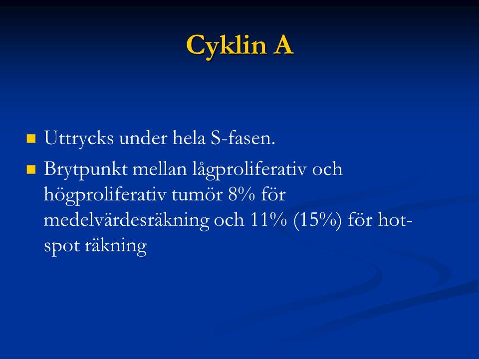 Cyklin A Uttrycks under hela S-fasen.