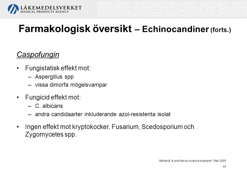 Farmakologisk översikt – Echinocandiner (forts.)