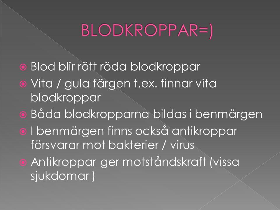 BLODKROPPAR=) Blod blir rött röda blodkroppar