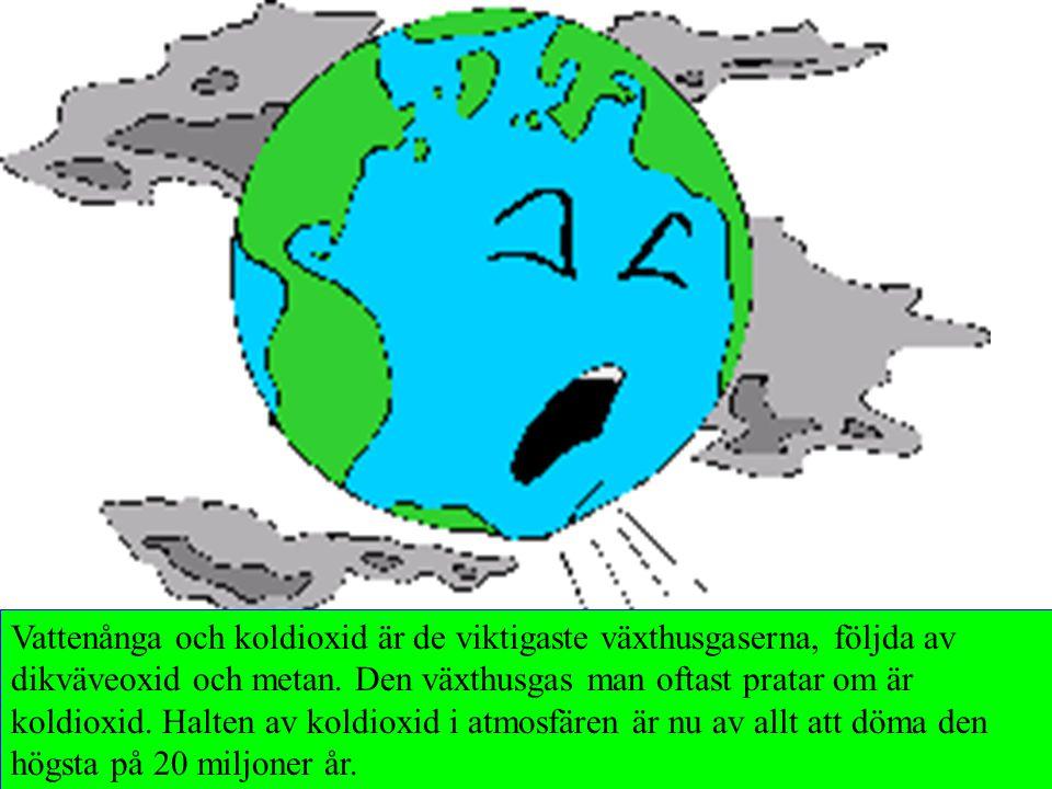 Vattenånga och koldioxid är de viktigaste växthusgaserna, följda av dikväveoxid och metan. Den växthusgas man oftast pratar om är koldioxid. Halten av koldioxid i atmosfären är nu av allt att döma den högsta på 20 miljoner år.