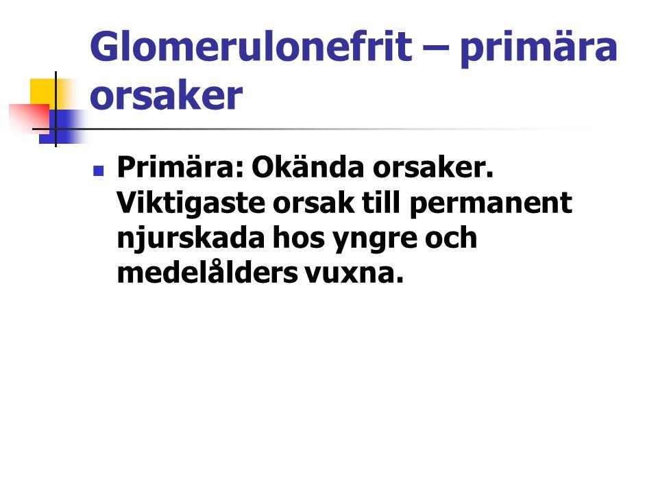 Glomerulonefrit – primära orsaker