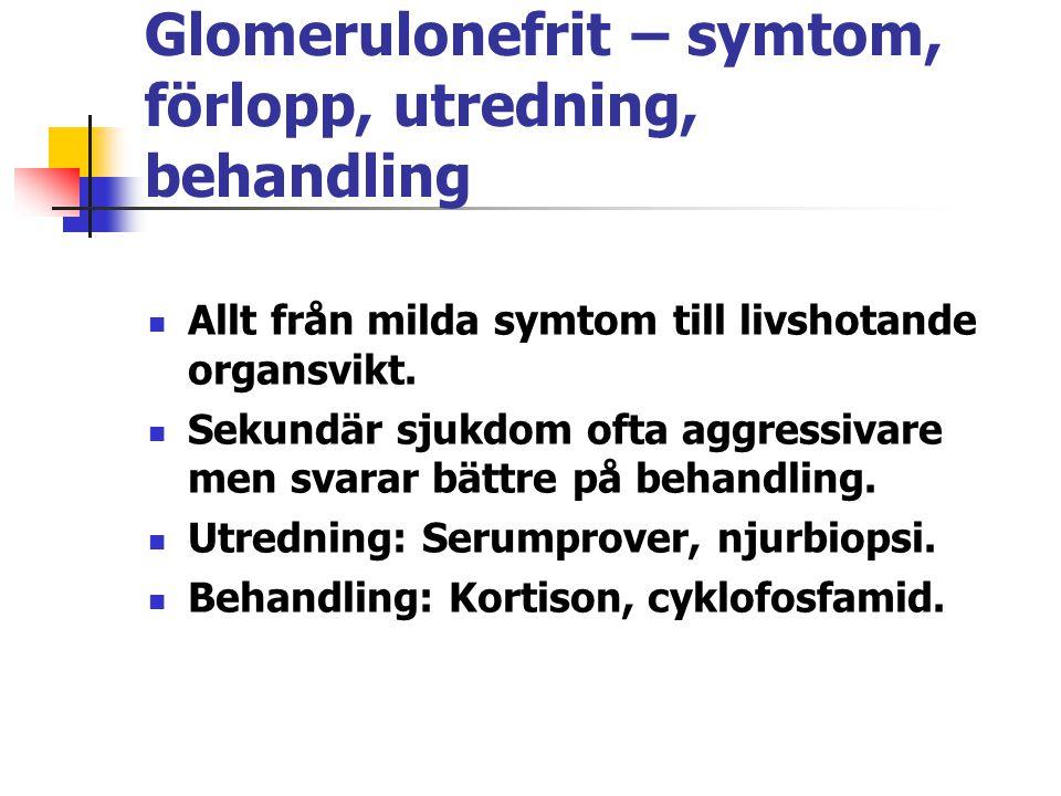Glomerulonefrit – symtom, förlopp, utredning, behandling