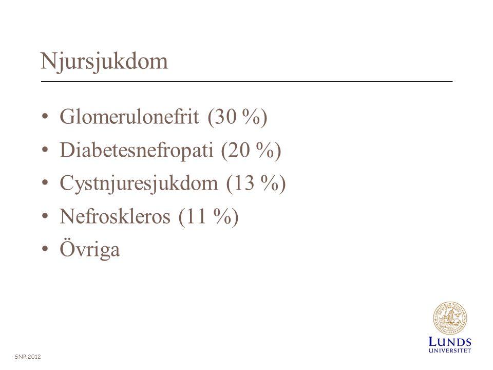 Njursjukdom Glomerulonefrit (30 %) Diabetesnefropati (20 %)