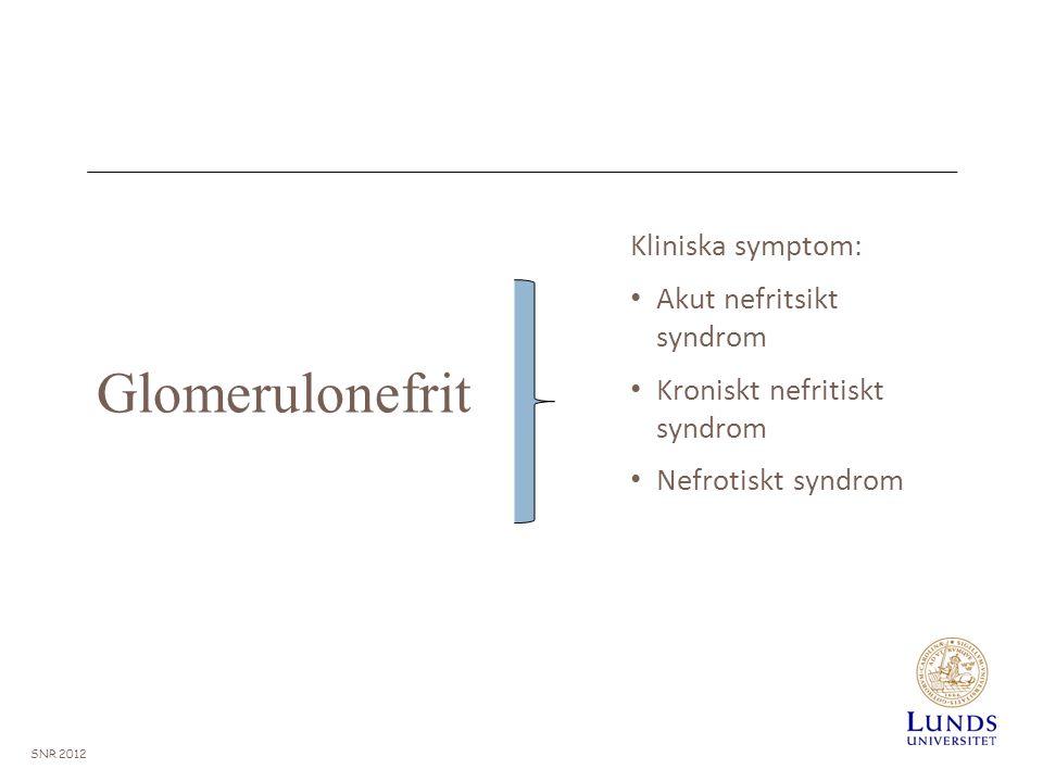 Glomerulonefrit Kliniska symptom: Akut nefritsikt syndrom