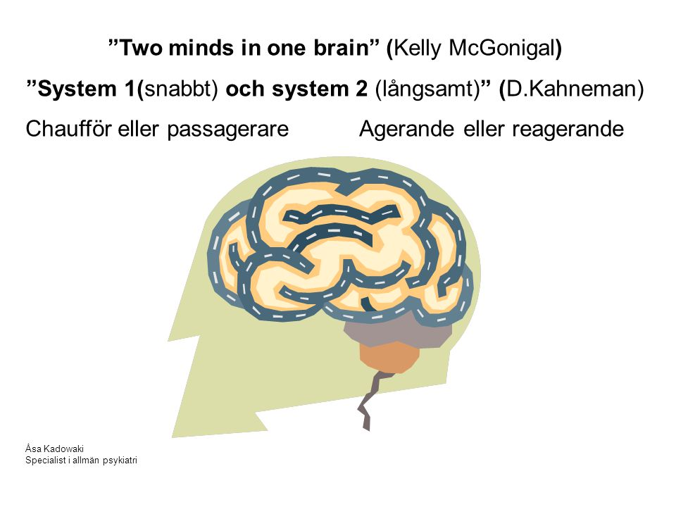 Two minds in one brain (Kelly McGonigal)
