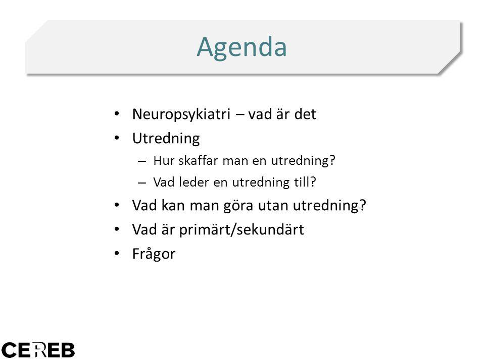 Agenda Neuropsykiatri – vad är det Utredning