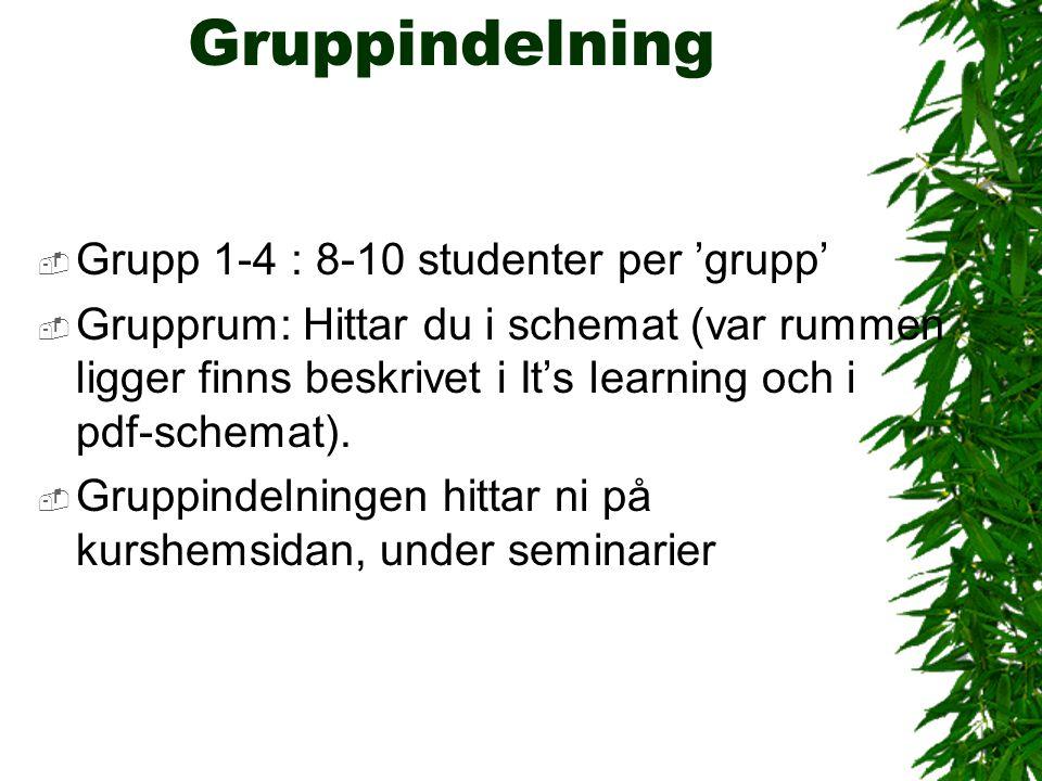 Gruppindelning Grupp 1-4 : 8-10 studenter per 'grupp'