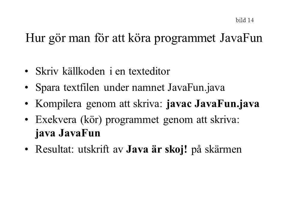 Hur gör man för att köra programmet JavaFun