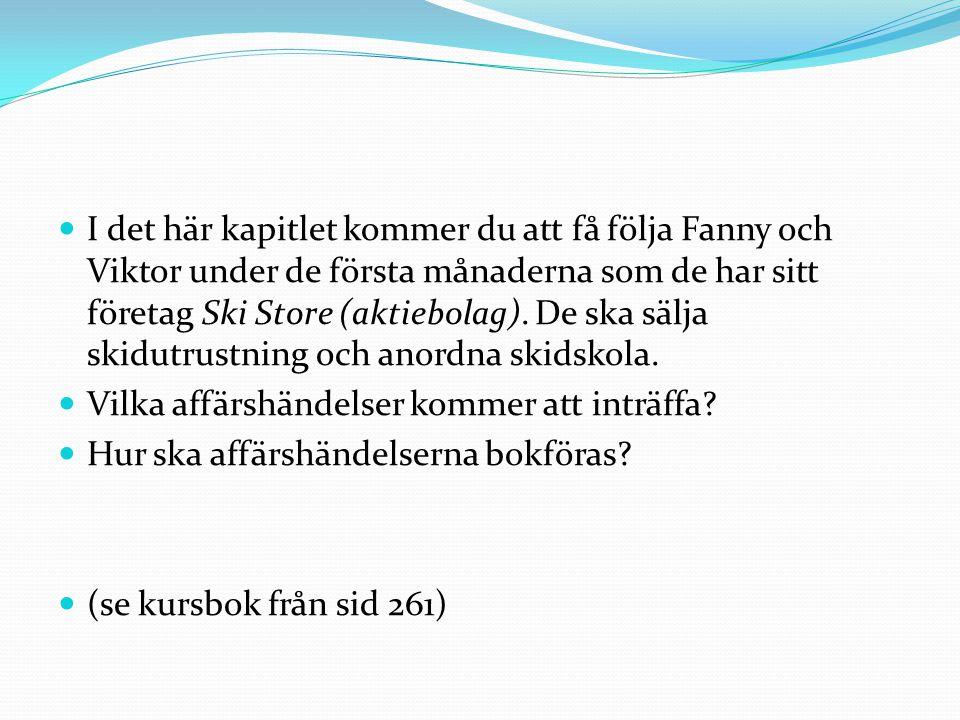 I det här kapitlet kommer du att få följa Fanny och Viktor under de första månaderna som de har sitt företag Ski Store (aktiebolag). De ska sälja skidutrustning och anordna skidskola.