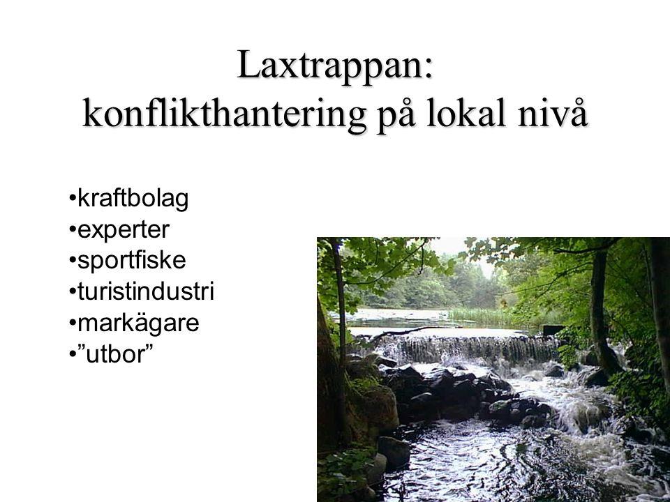 Laxtrappan: konflikthantering på lokal nivå