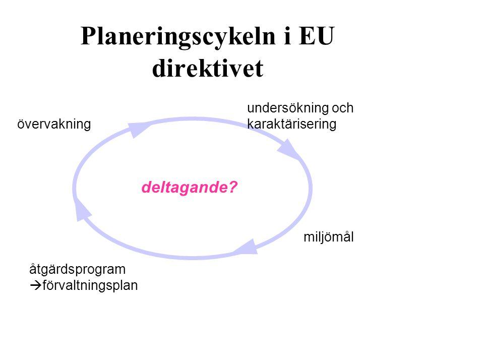 Planeringscykeln i EU direktivet