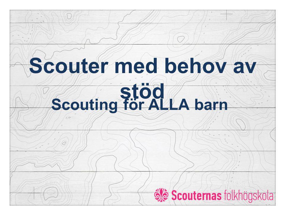 Scouter med behov av stöd