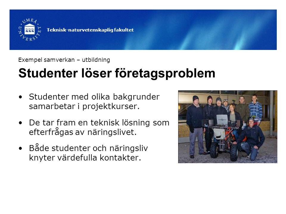 Studenter löser företagsproblem