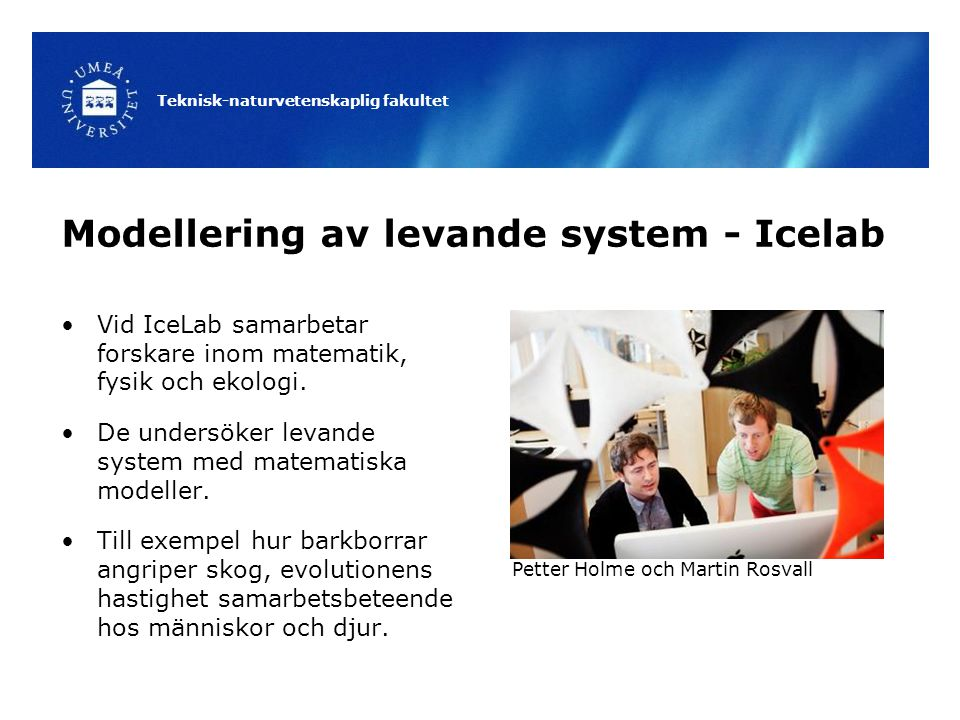 Modellering av levande system - Icelab