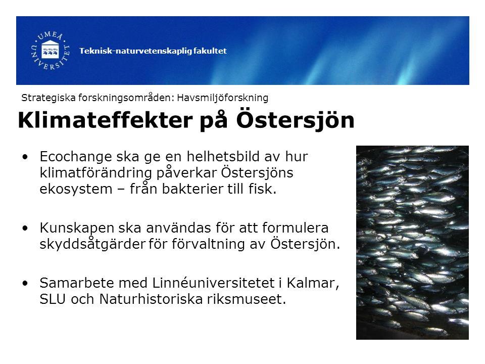 Klimateffekter på Östersjön