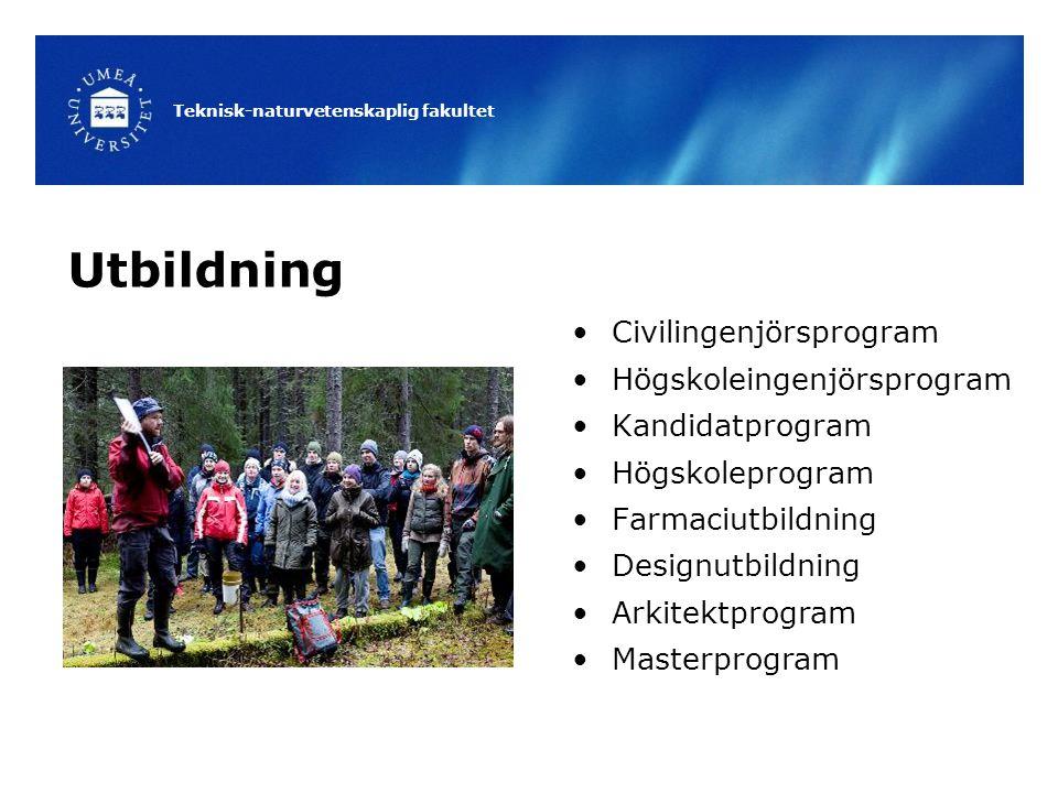 Utbildning Civilingenjörsprogram Högskoleingenjörsprogram
