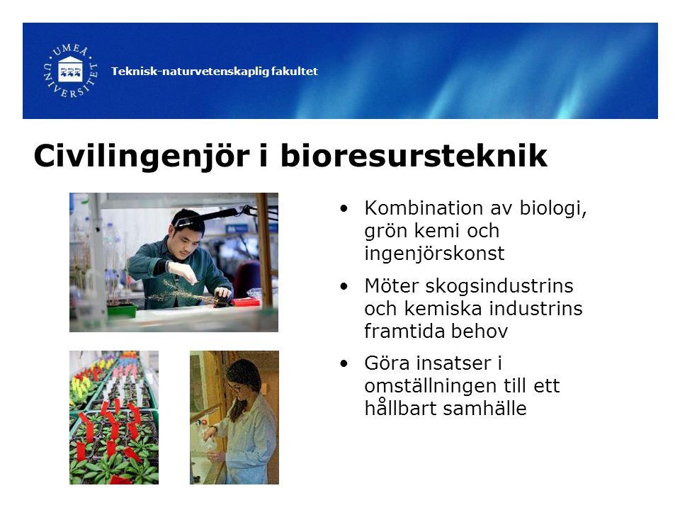 Civilingenjör i bioresursteknik