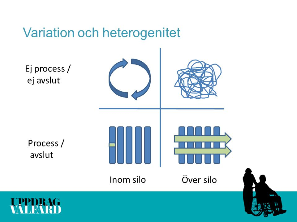 Variation och heterogenitet