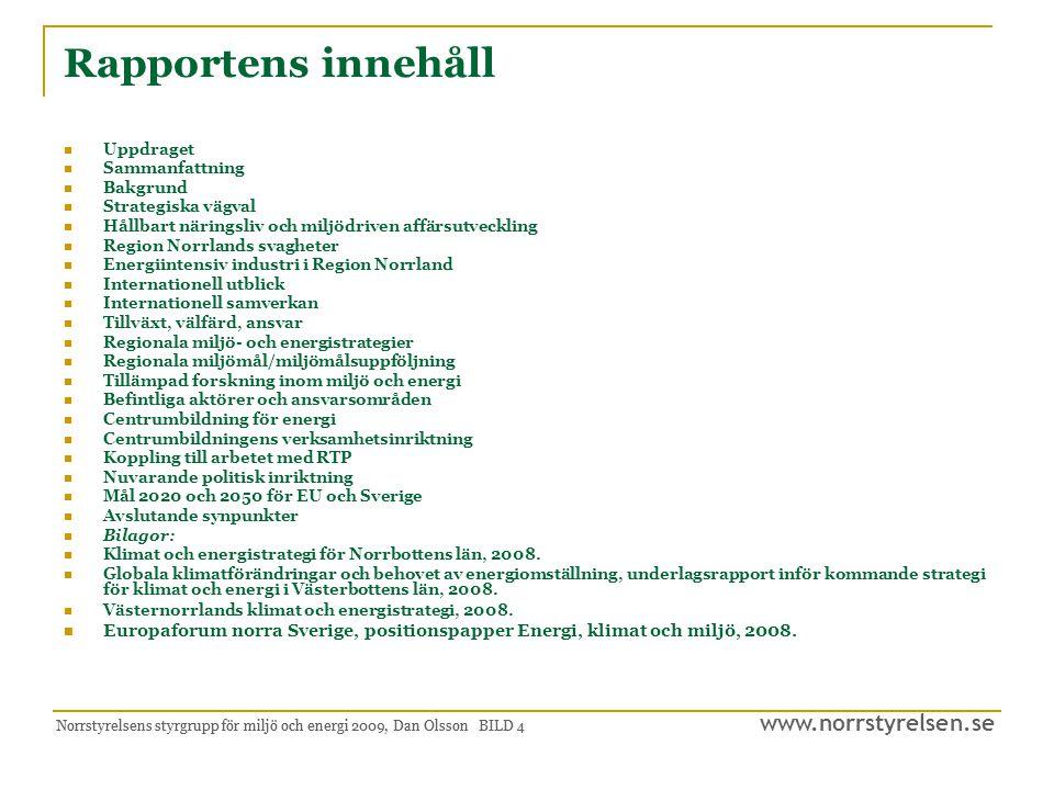 Rapportens innehåll Uppdraget. Sammanfattning. Bakgrund. Strategiska vägval. Hållbart näringsliv och miljödriven affärsutveckling.