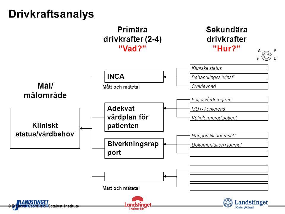 Drivkraftsanalys Primära drivkrafter (2-4) Vad