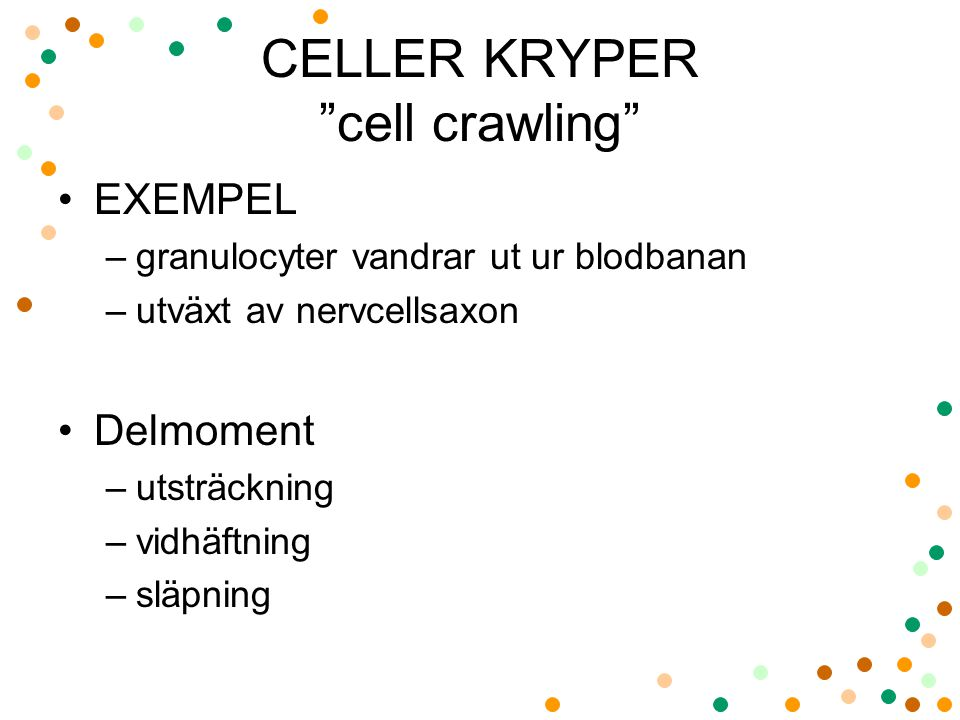 CELLER KRYPER cell crawling