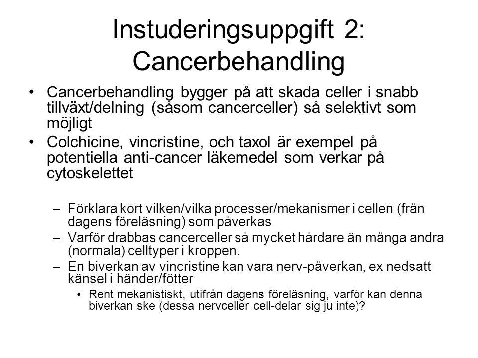 Instuderingsuppgift 2: Cancerbehandling
