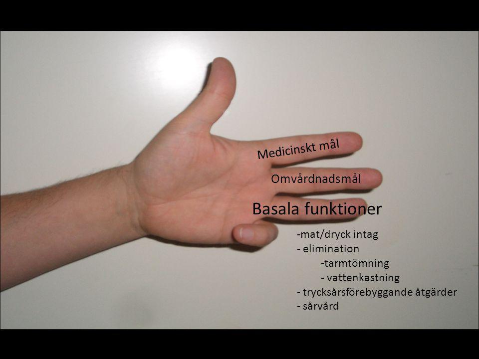 Basala funktioner Medicinskt mål Omvårdnadsmål mat/dryck intag