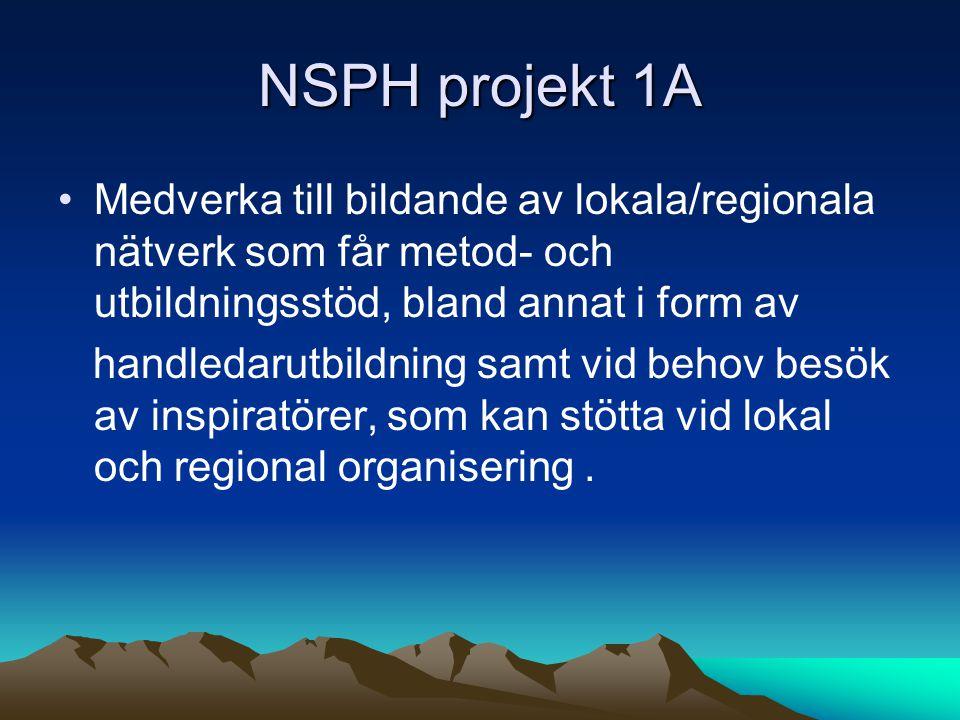 NSPH projekt 1A Medverka till bildande av lokala/regionala nätverk som får metod- och utbildningsstöd, bland annat i form av.