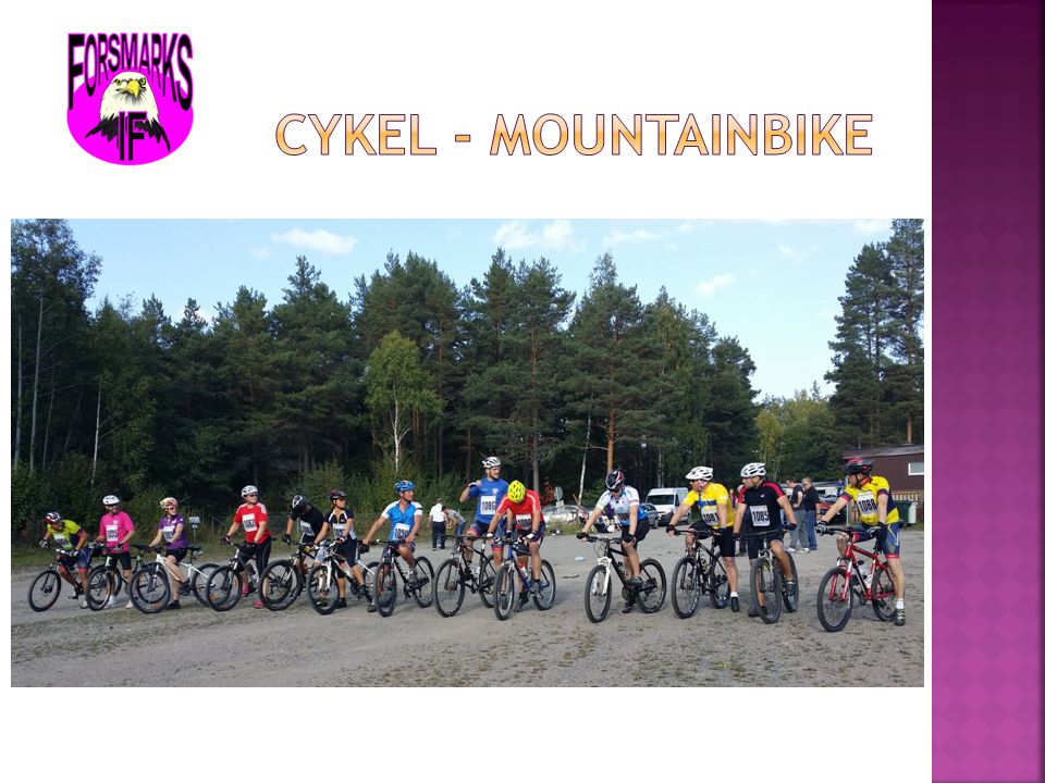 Cykel - mountainbike