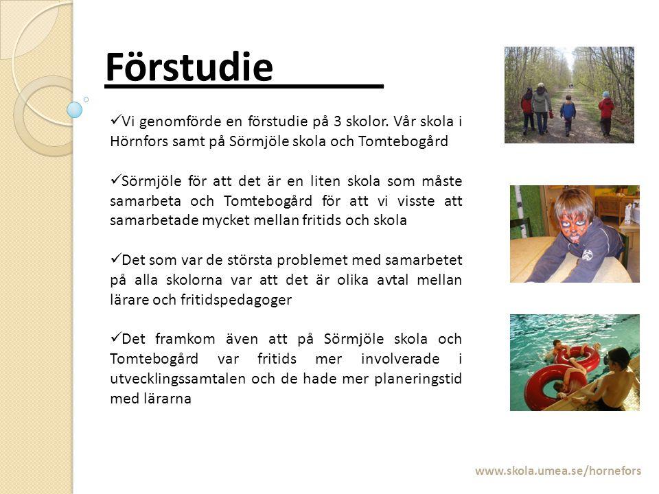 Förstudie_____ Vi genomförde en förstudie på 3 skolor. Vår skola i Hörnfors samt på Sörmjöle skola och Tomtebogård.