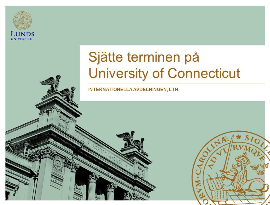 Sjätte terminen på University of Connecticut