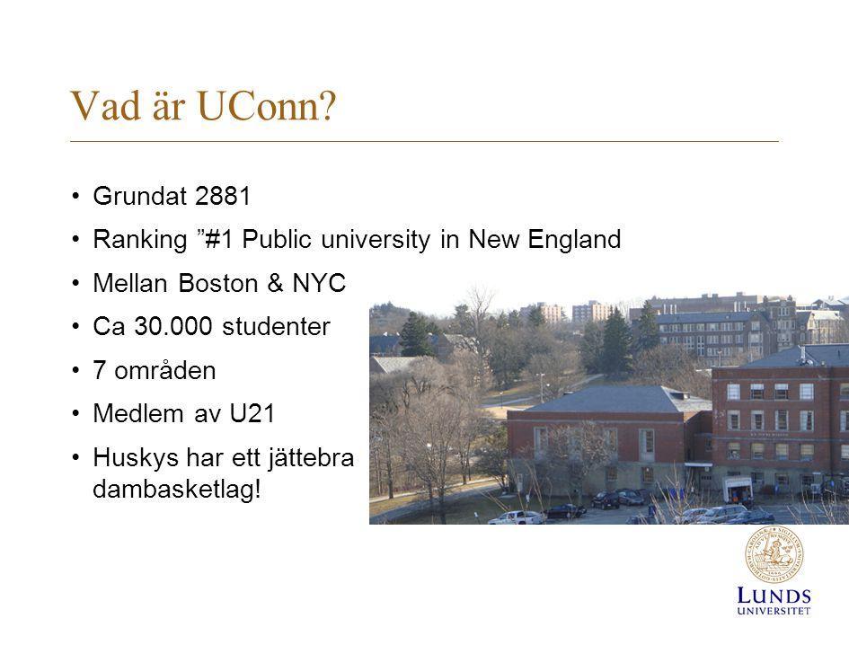 Vad är UConn Grundat 2881. Ranking #1 Public university in New England. Mellan Boston & NYC. Ca 30.000 studenter.