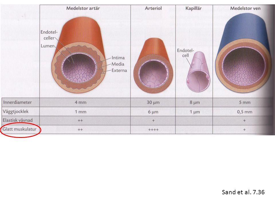 Sand et al. 7.36