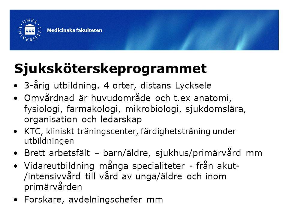 Sjuksköterskeprogrammet