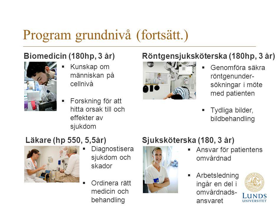 Program grundnivå (fortsätt.)