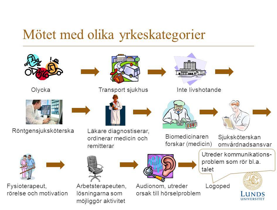 Mötet med olika yrkeskategorier