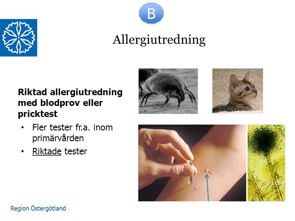 B Allergiutredning. Riktad allergiutredning med blodprov eller pricktest. Fler tester fr.a. inom primärvården.