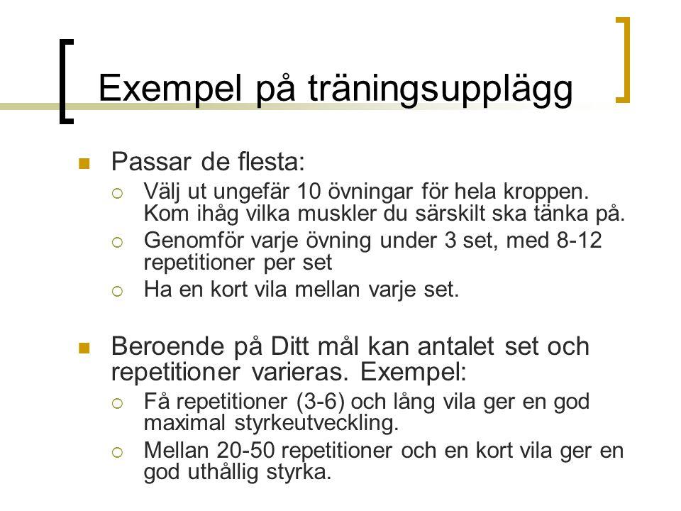 Exempel på träningsupplägg