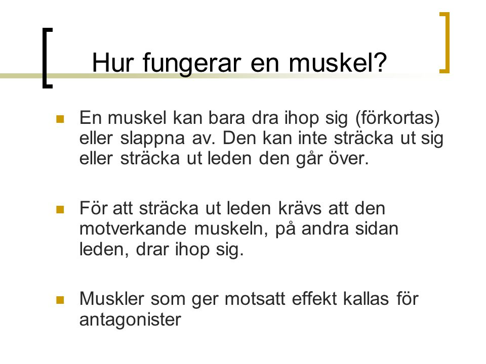 Hur fungerar en muskel