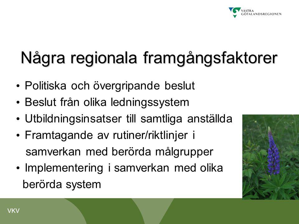 Några regionala framgångsfaktorer