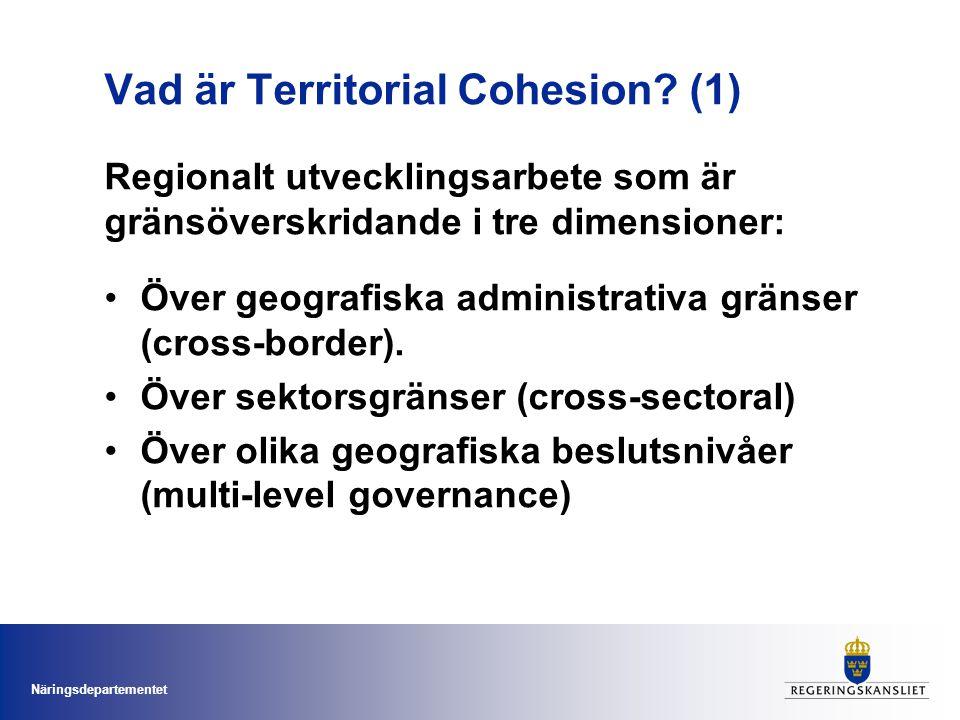 Vad är Territorial Cohesion