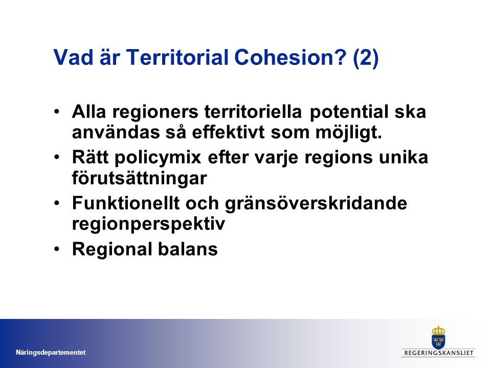 Vad är Territorial Cohesion (2)