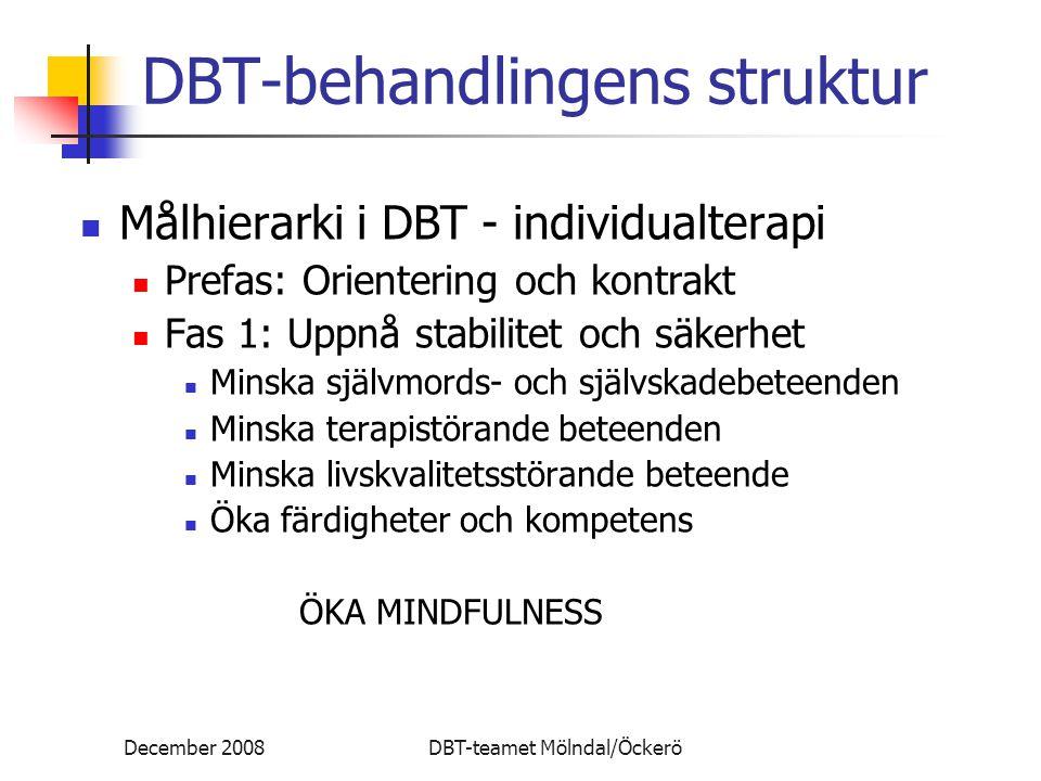 DBT-behandlingens struktur