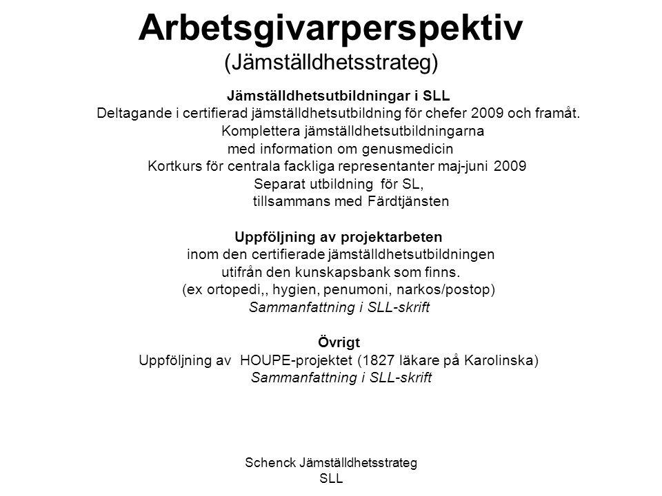 Arbetsgivarperspektiv (Jämställdhetsstrateg)