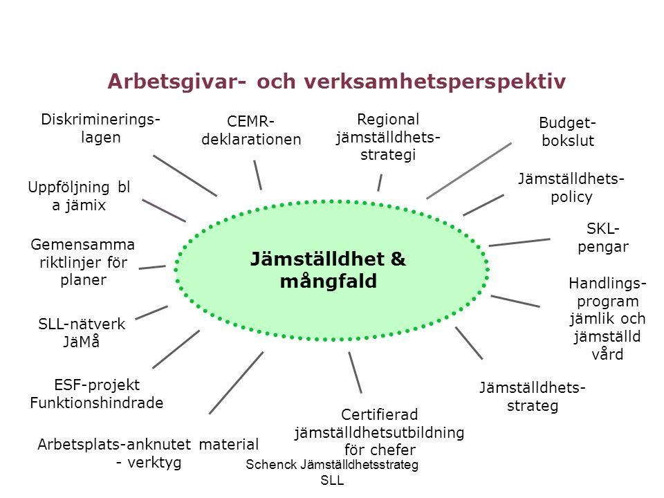 Arbetsgivar- och verksamhetsperspektiv Jämställdhet & mångfald